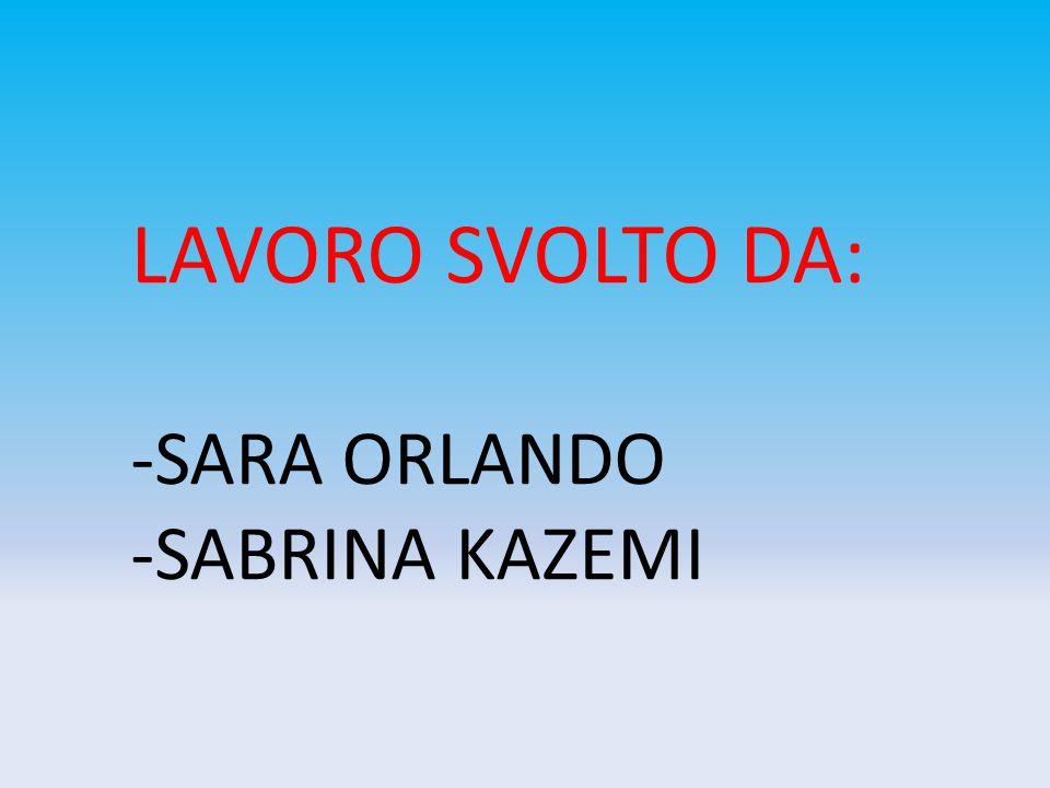 LAVORO SVOLTO DA: -SARA ORLANDO -SABRINA KAZEMI
