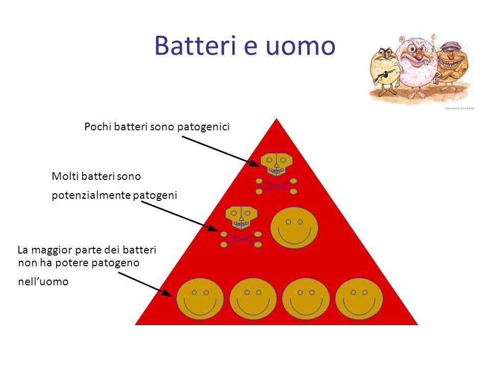 Batteri e uomo Pochi batteri sono patogenici
