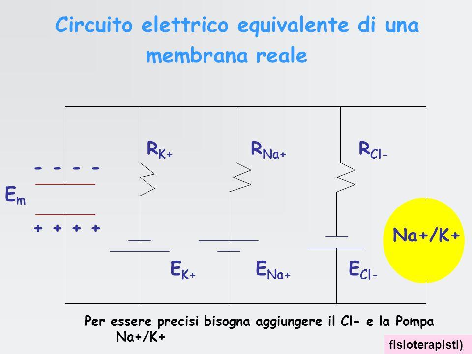 Circuito elettrico equivalente di una membrana reale