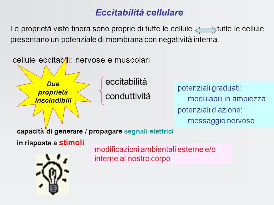 Eccitabilità cellulare