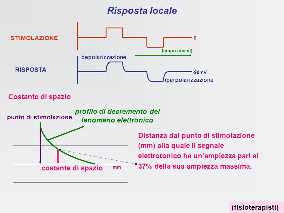 profilo di decremento del