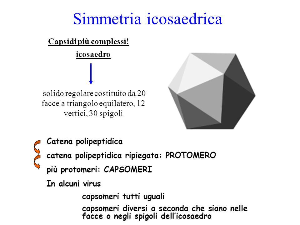 Simmetria icosaedrica