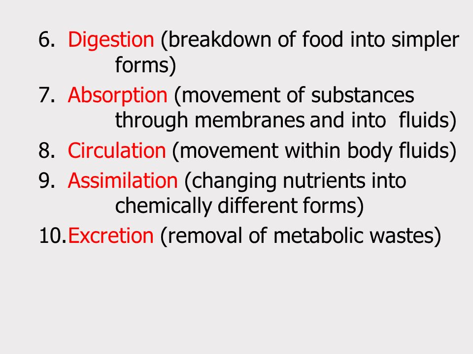 8. Circulation (movement within body fluids)