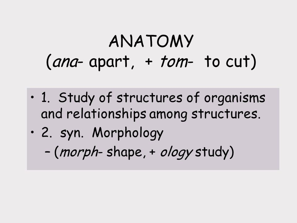 ANATOMY (ana- apart, + tom- to cut)