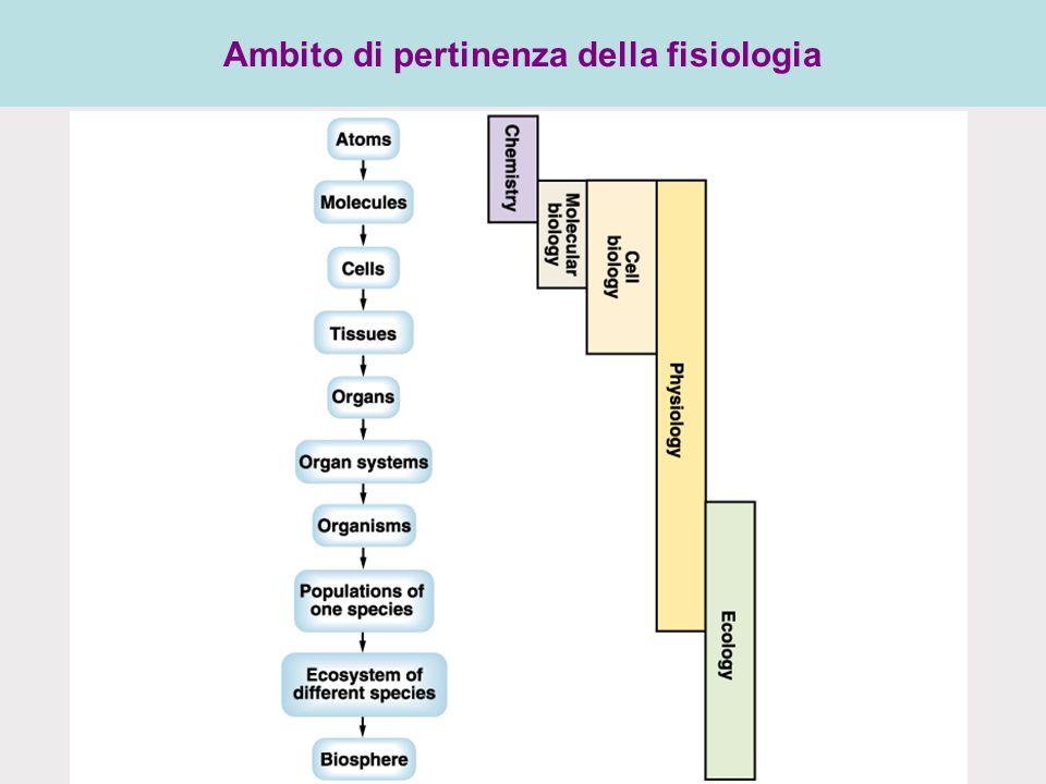 Ambito di pertinenza della fisiologia