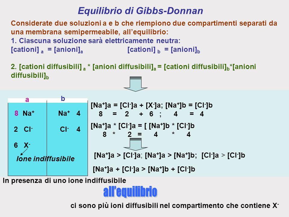 Equilibrio di Gibbs-Donnan