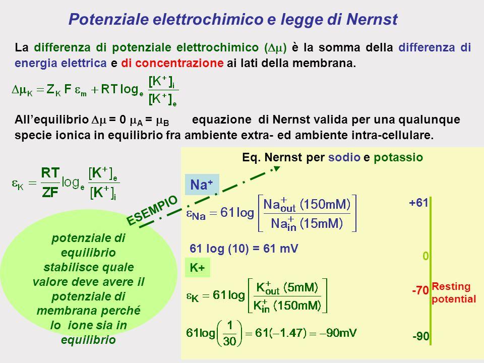 Potenziale elettrochimico e legge di Nernst