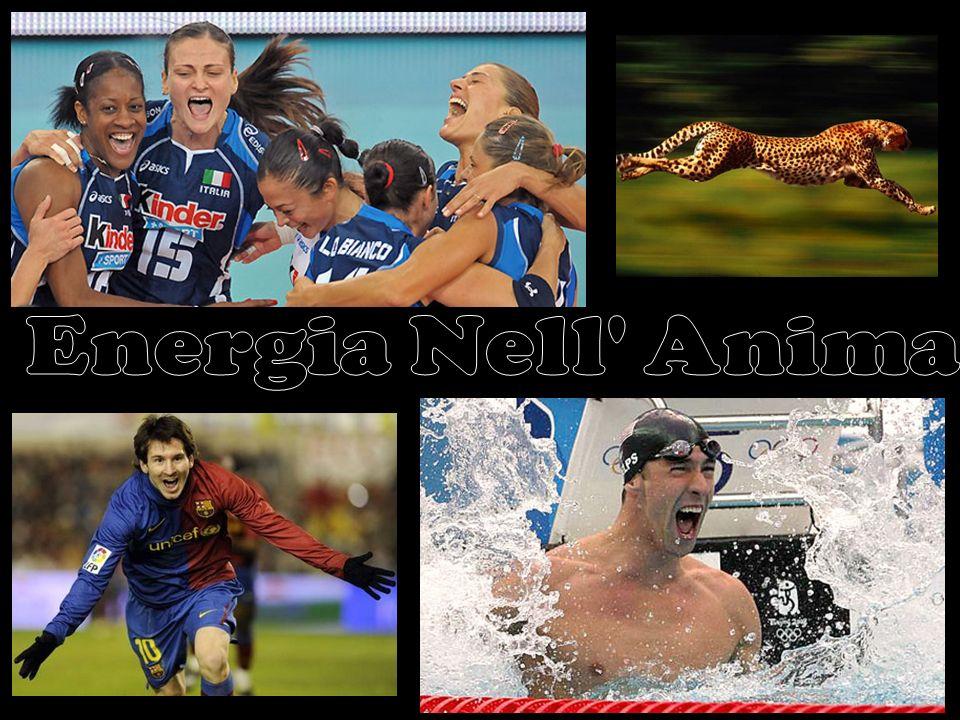 Energia Nell Anima