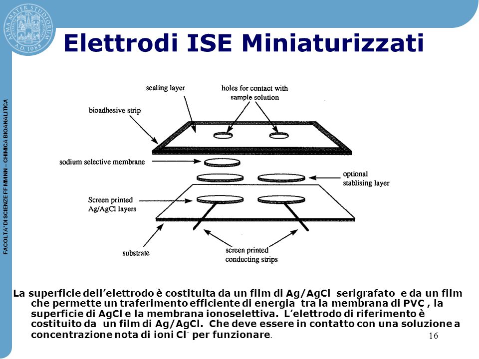 Elettrodi ISE Miniaturizzati