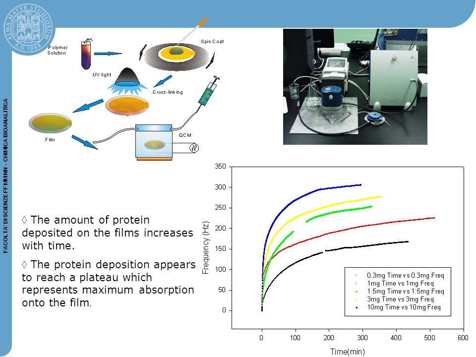 The amount of protein deposited on the films increases with time.