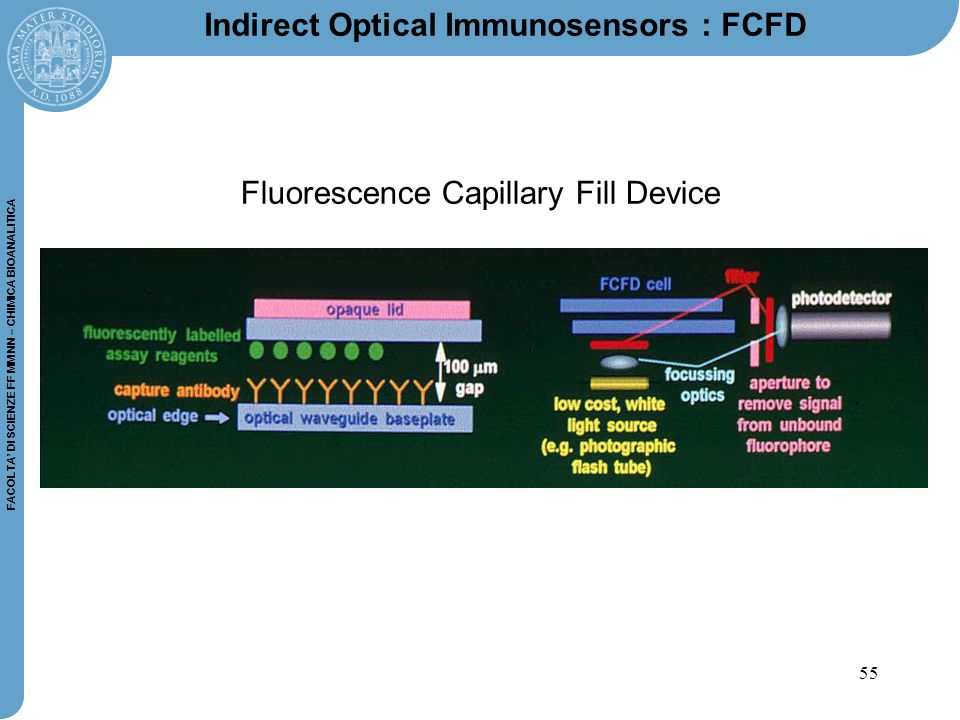 Indirect Optical Immunosensors : FCFD