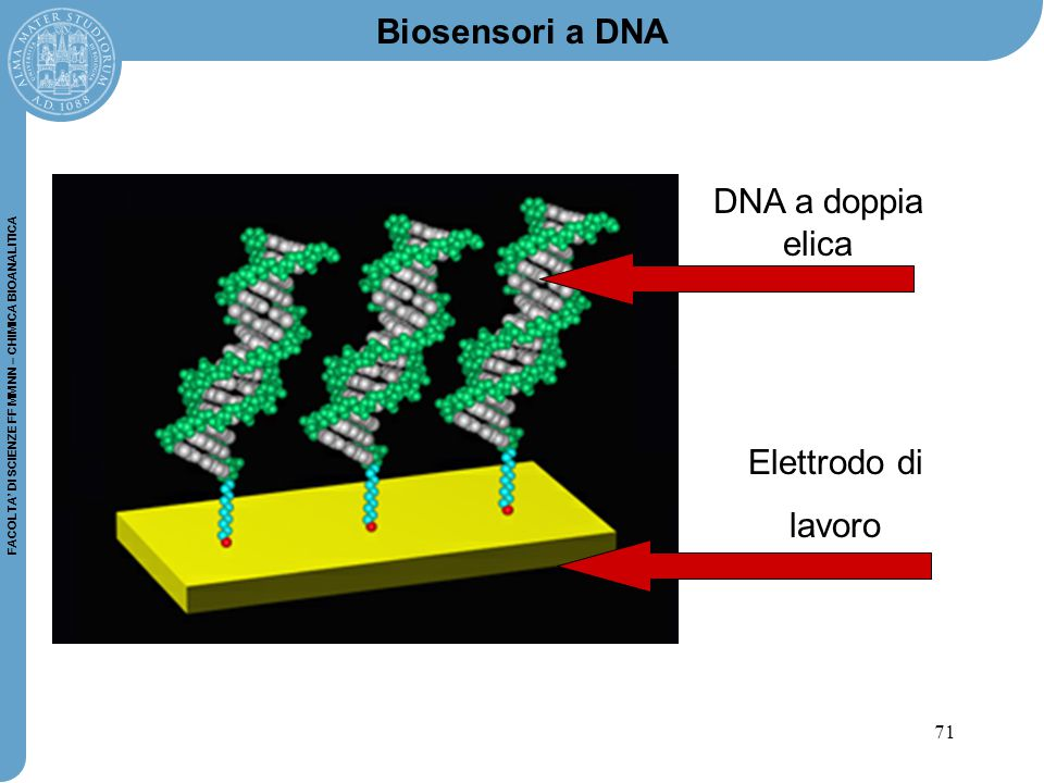 Biosensori a DNA DNA a doppia elica Elettrodo di lavoro