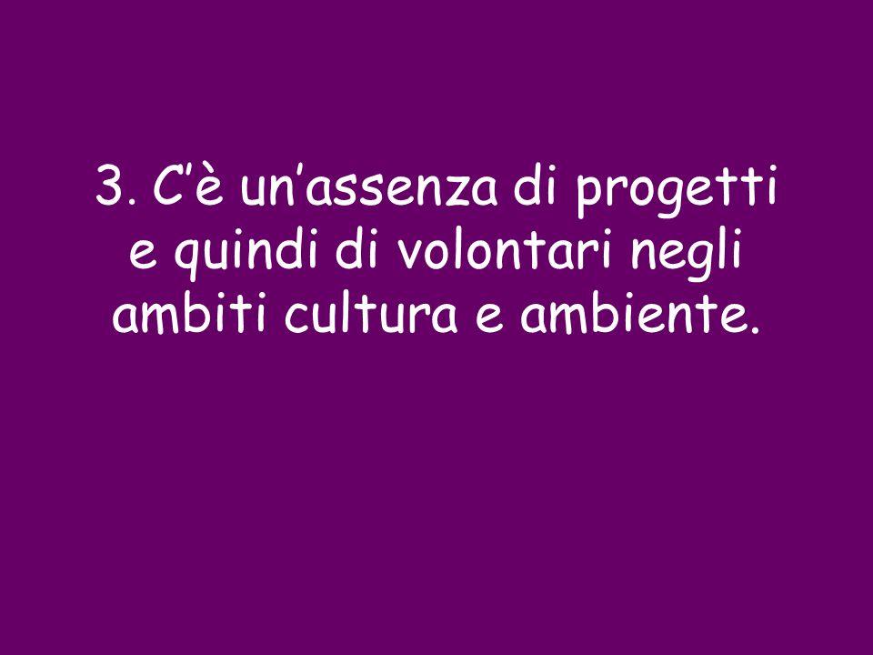 3. C'è un'assenza di progetti e quindi di volontari negli ambiti cultura e ambiente.
