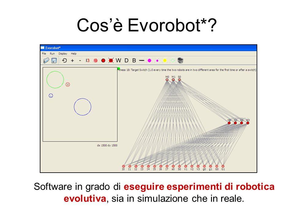 Cos'è Evorobot*.