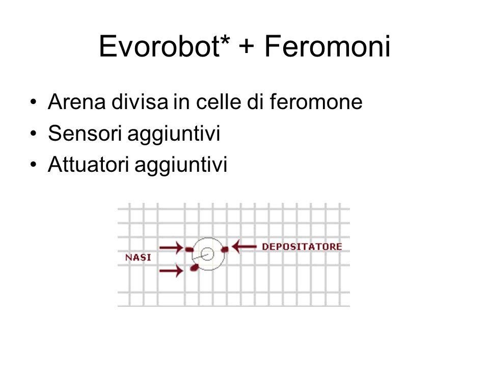 Evorobot* + Feromoni Arena divisa in celle di feromone