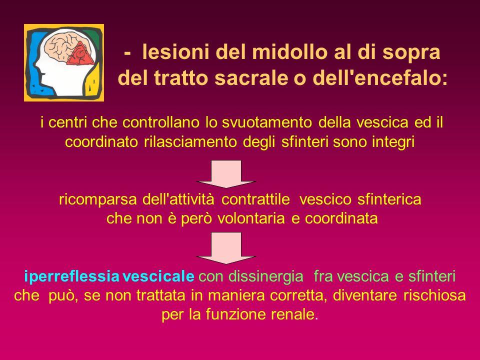 - lesioni del midollo al di sopra del tratto sacrale o dell encefalo: