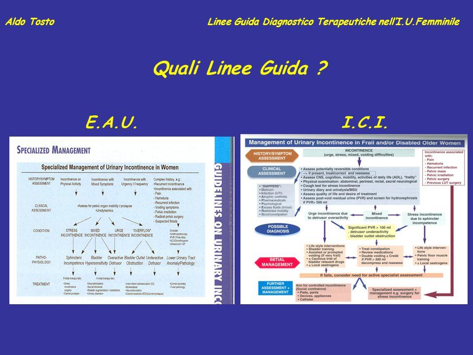 Quali Linee Guida E.A.U. I.C.I. Aldo Tosto