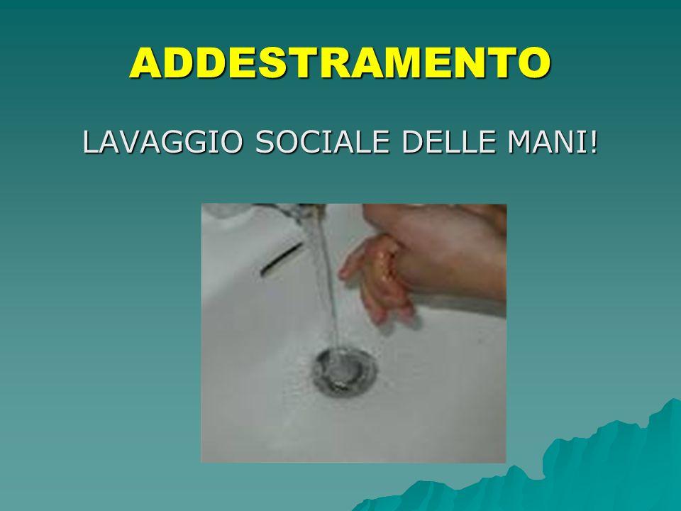 LAVAGGIO SOCIALE DELLE MANI!