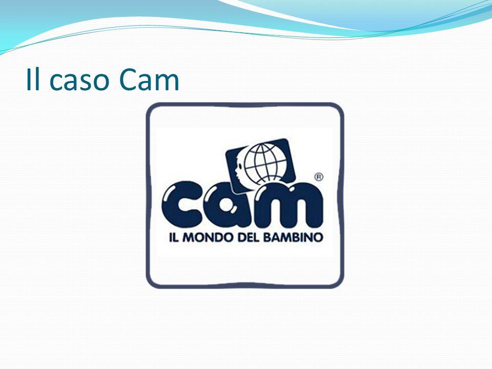 Il caso Cam