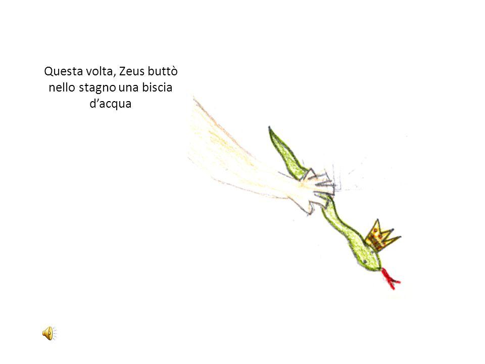 Questa volta, Zeus buttò nello stagno una biscia d'acqua