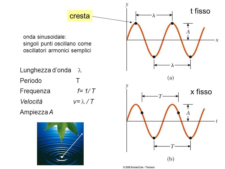 t fisso cresta x fisso Lunghezza d'onda l Periodo T Frequenza f= 1/ T