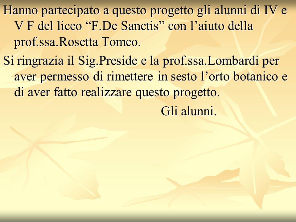 Hanno partecipato a questo progetto gli alunni di IV e V F del liceo F.De Sanctis con l'aiuto della prof.ssa.Rosetta Tomeo.