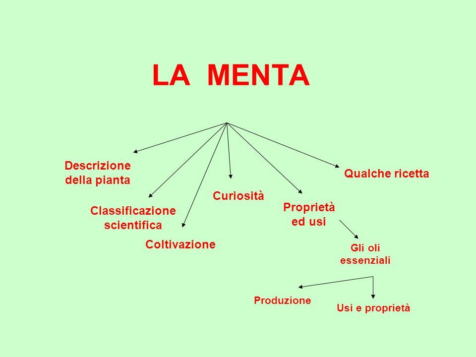 Descrizione della pianta Classificazione scientifica