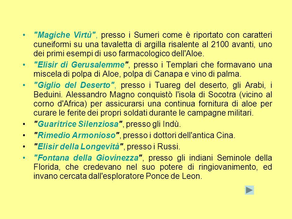 Magiche Virtù , presso i Sumeri come è riportato con caratteri cuneiformi su una tavaletta di argilla risalente al 2100 avanti, uno dei primi esempi di uso farmacologico dell Aloe.