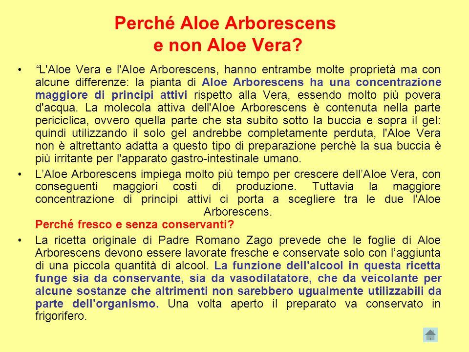 Perché Aloe Arborescens e non Aloe Vera