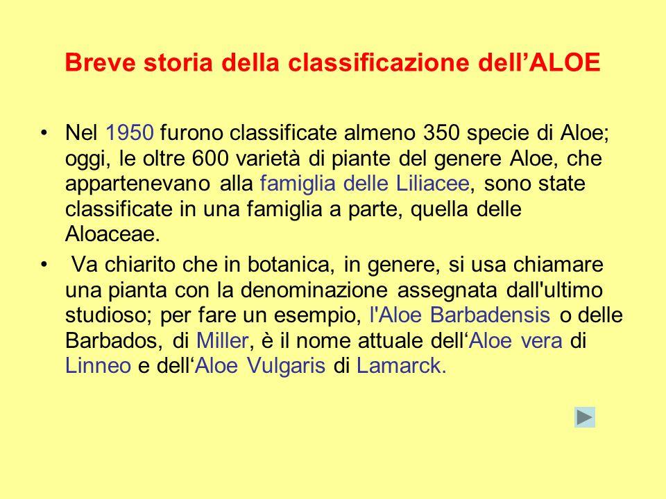 Breve storia della classificazione dell'ALOE