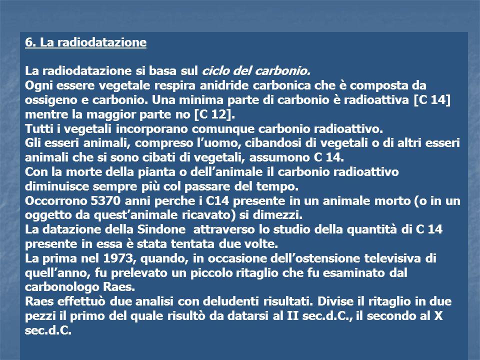 6. La radiodatazione La radiodatazione si basa sul ciclo del carbonio.