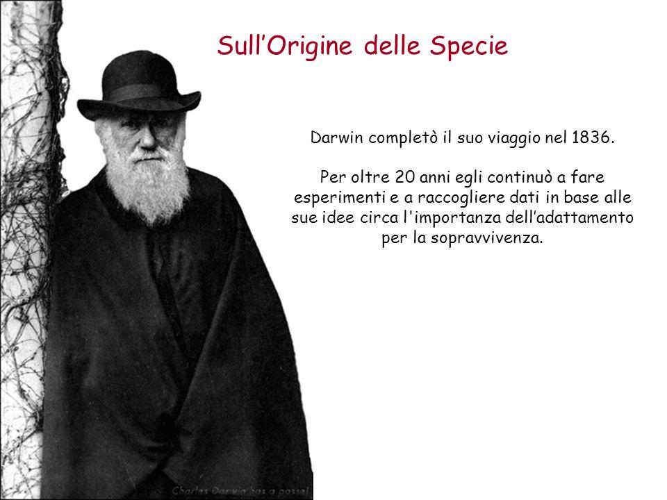 Sull'Origine delle Specie