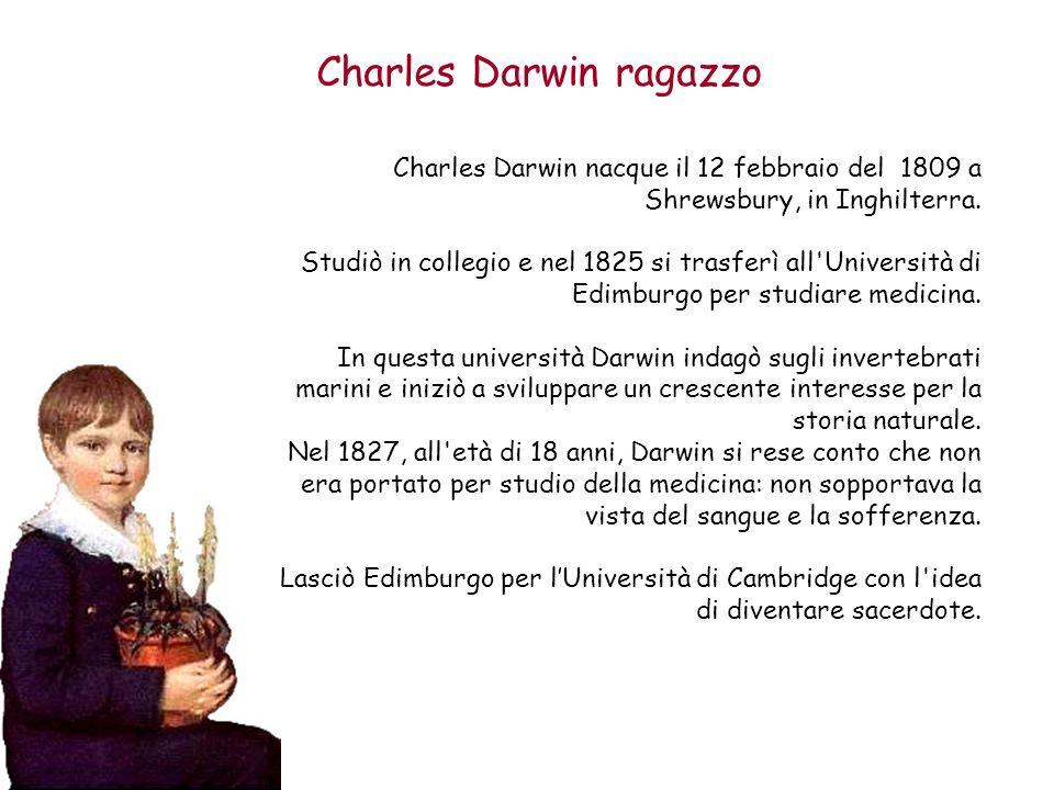 Charles Darwin ragazzo