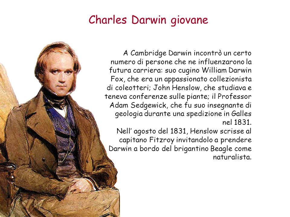 Charles Darwin giovane