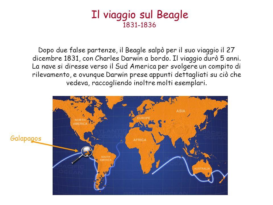 Il viaggio sul Beagle 1831-1836