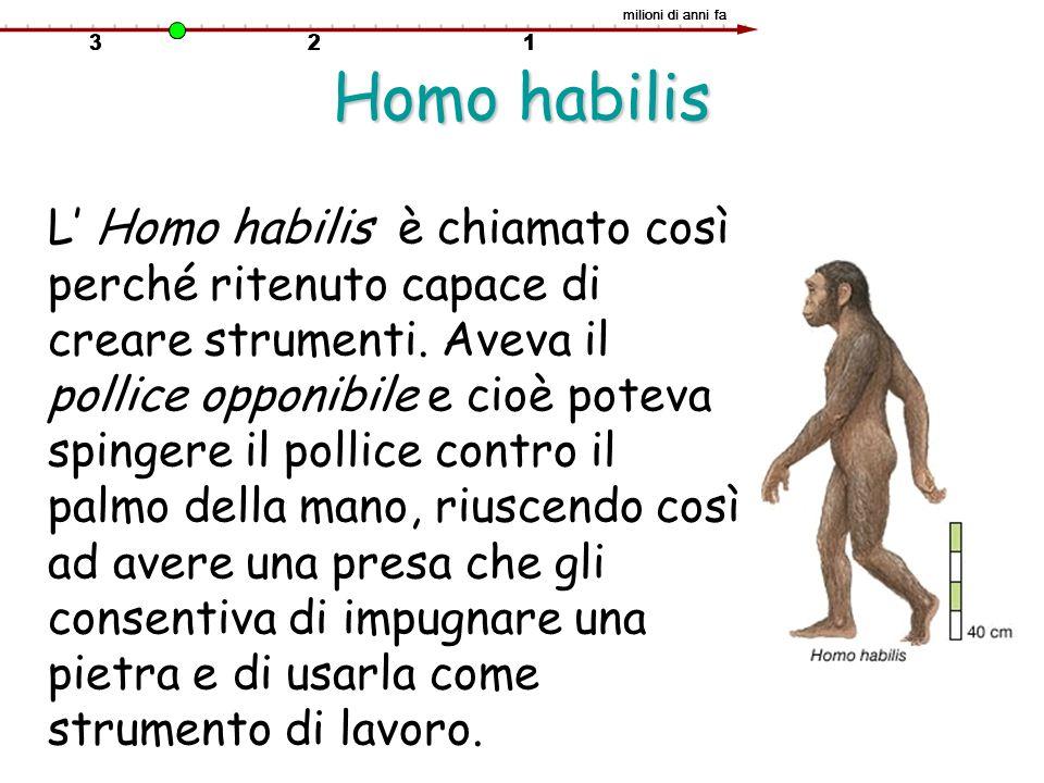 milioni di anni fa Homo habilis.
