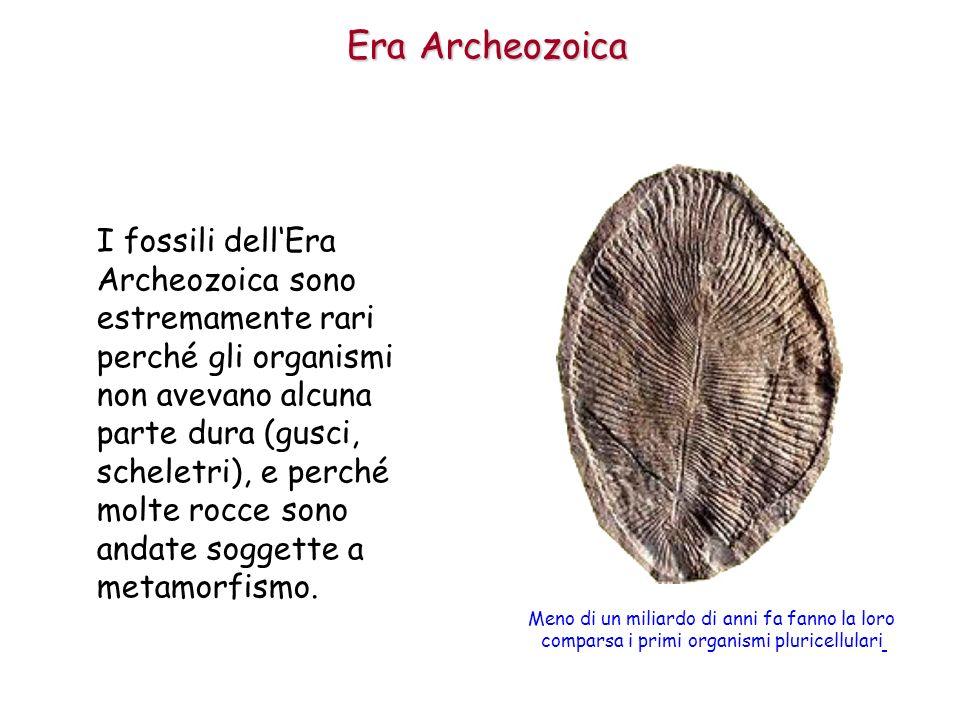 Era Archeozoica