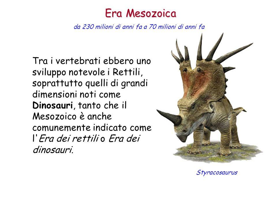 Era Mesozoica da 230 milioni di anni fa a 70 milioni di anni fa.