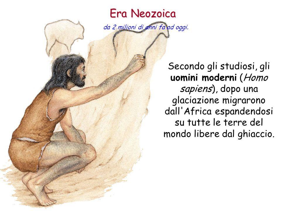 Era Neozoica da 2 milioni di anni fa ad oggi.