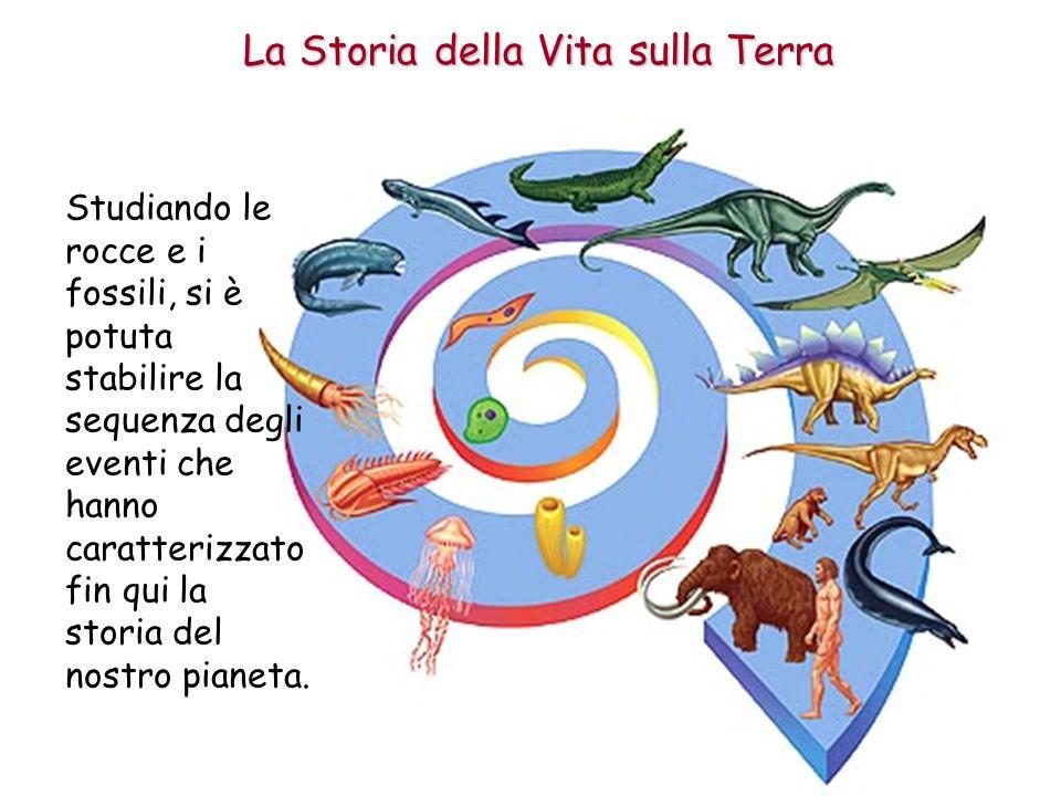 La Storia della Vita sulla Terra