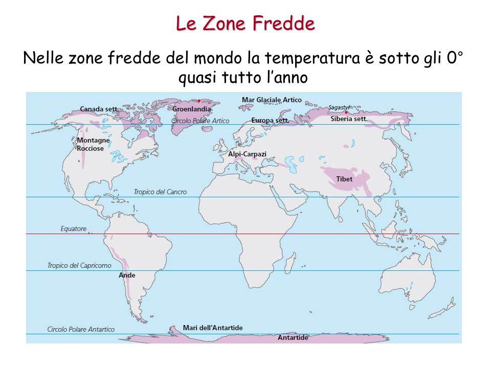 Le Zone Fredde Nelle zone fredde del mondo la temperatura è sotto gli 0° quasi tutto l'anno