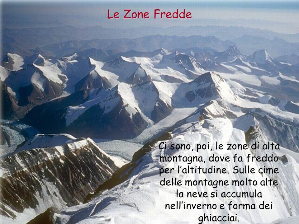 Le Zone Fredde
