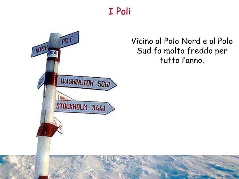 Vicino al Polo Nord e al Polo Sud fa molto freddo per tutto l'anno.