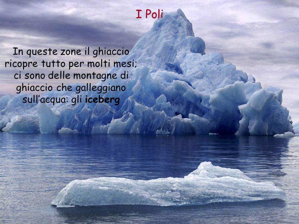 ghiaccio che galleggiano sull'acqua: gli iceberg