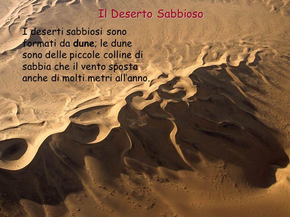 I deserti ppt video online scaricare for Colore vento di sabbia deserto