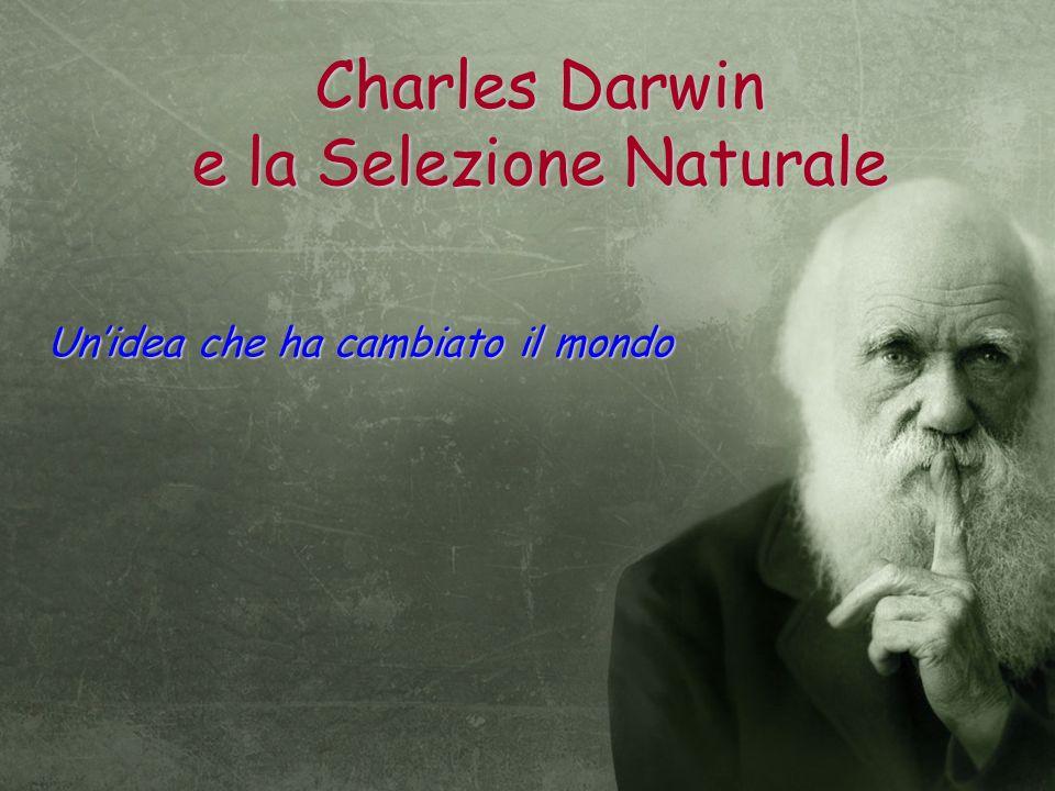 Charles Darwin e la Selezione Naturale
