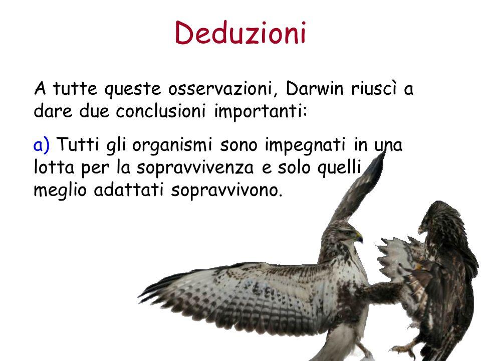 Deduzioni A tutte queste osservazioni, Darwin riuscì a dare due conclusioni importanti: