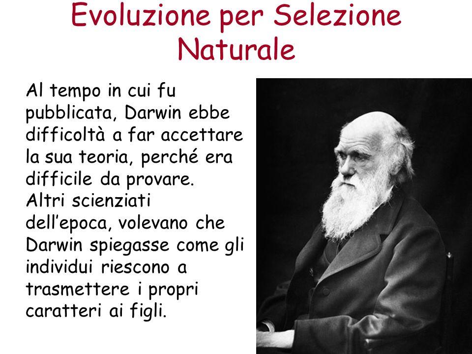 Evoluzione per Selezione Naturale