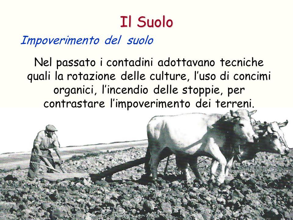 Il Suolo Impoverimento del suolo