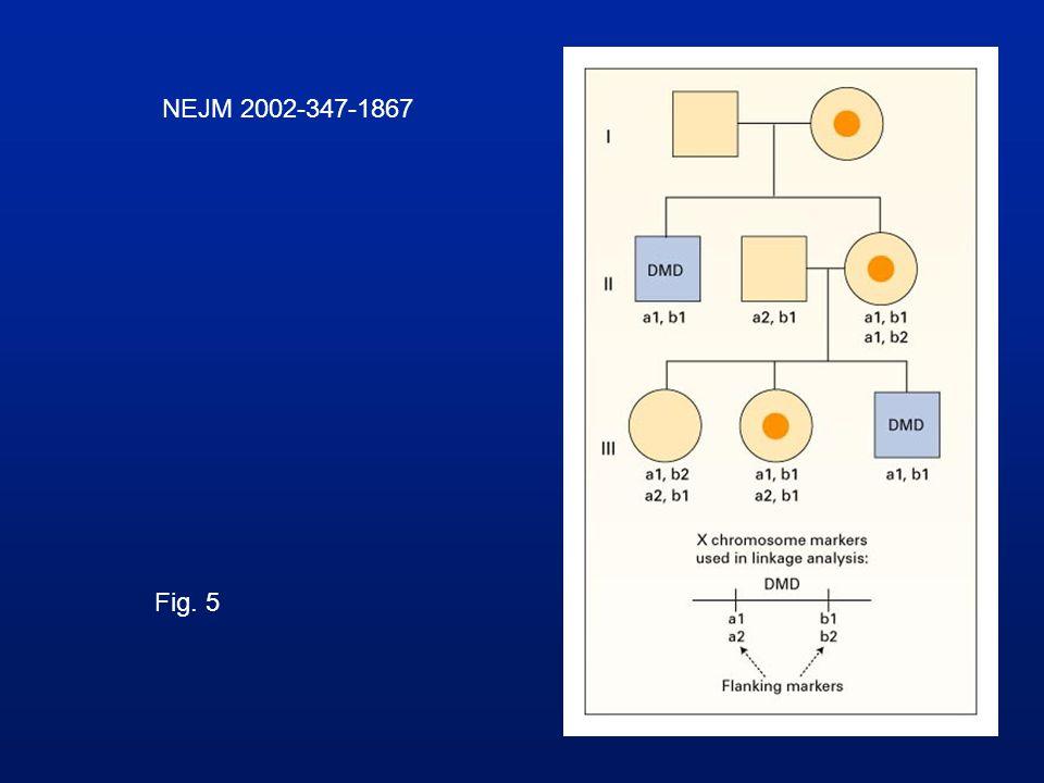 NEJM 2002-347-1867 Fig. 5